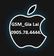 GSM_Gia Lai